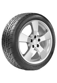 BFGoodrich® g-Force Super Sport A/S