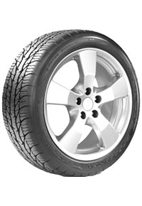 BFGoodrich® g-Force™ Super Sport A/S H/V